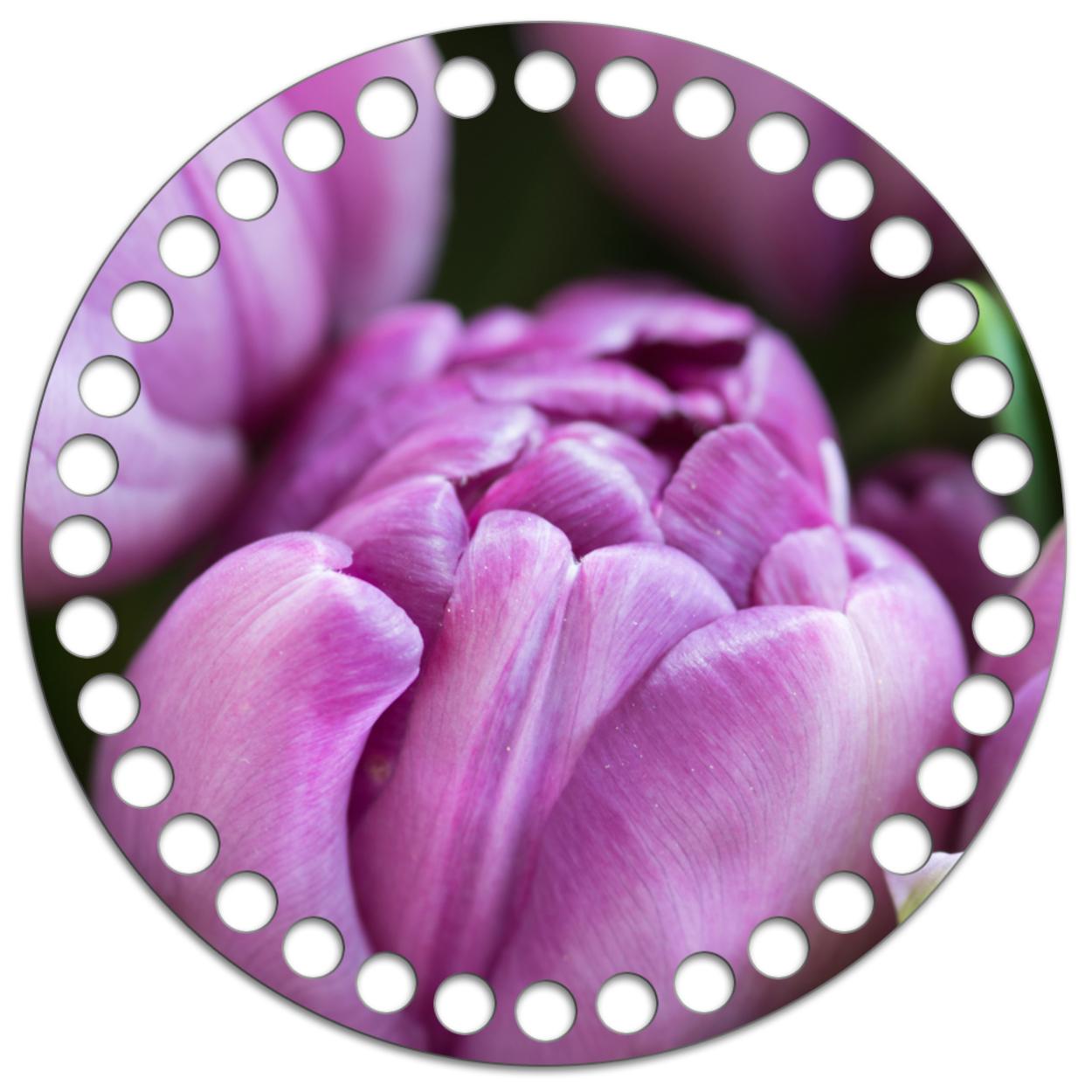 Круг 15 см. Тюльпан